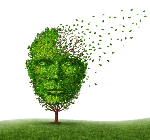 Solvent Exposure Linked to Memory Loss